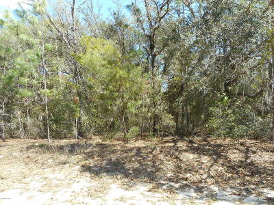 Citrus County Residential Lots & Land For Sale: 9633 N Sherman Drive
