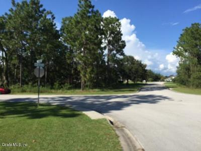 Residential Lots & Land For Sale: Lake Diamond Avenue