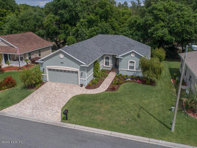 Stonecrest Single Family Home For Sale: 16963 S 110th Court Road