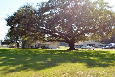 Ocala Farm For Sale: 7320 NW 21st Street