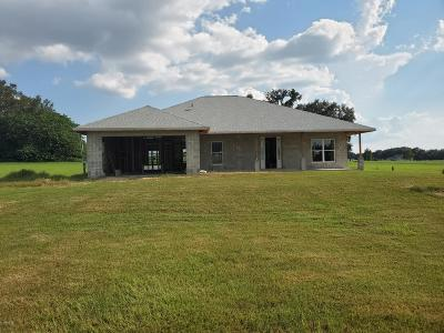 Dunnellon Single Family Home For Sale: 21850 SW 3rd Lane