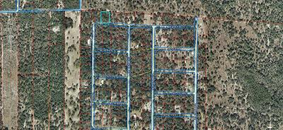Levy County Residential Lots & Land For Sale: NE 79 Place