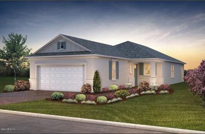 Ocala FL Single Family Home For Sale: $227,775
