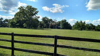 Ocala Farm For Sale: 2900 NW 60th Avenue