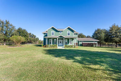 Micanopy Single Family Home For Sale: 6446 SE 169th Avenue