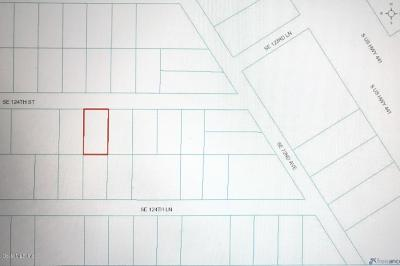 Belleview Residential Lots & Land For Sale: SE 124th Street Street