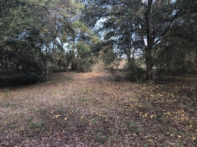 Citrus County Residential Lots & Land For Sale: 5201 S Old Floral City Road