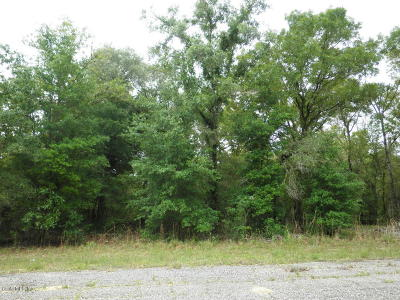 Citrus County Residential Lots & Land For Sale: 1648 W Crane Lane