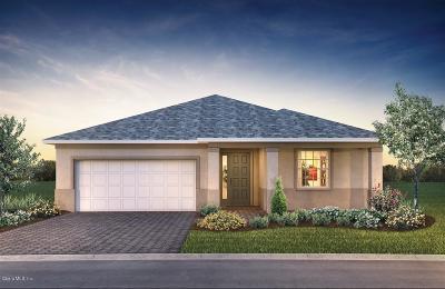 Ocala FL Single Family Home For Sale: $242,101