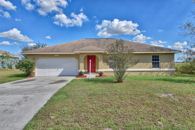 Ocala Single Family Home For Sale: 13365 SW 49th Ave Avenue