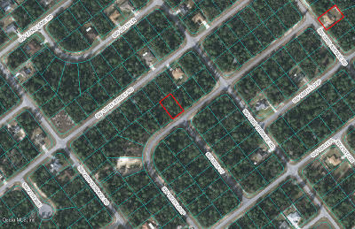 Ocala Residential Lots & Land For Sale: SW 167 Loop