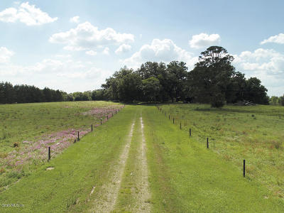 Dunnellon Farm For Sale: 200 NW 210th Avenue