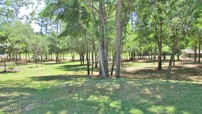 Marion County Residential Lots & Land For Sale: SW 91 Loop