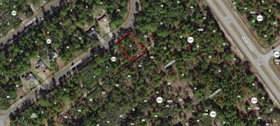 Citrus County Residential Lots & Land For Sale: 8465 N Bolder Drive