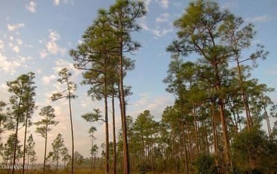 Citrus County, Levy County, Marion County Residential Lots & Land For Sale: 10161-1022 SW 47th Avenue