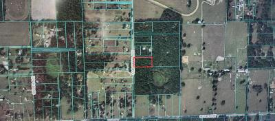 Citrus County, Levy County, Marion County Residential Lots & Land For Sale: SW Magnolia Avenue