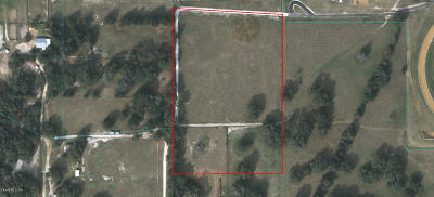 Ocala Residential Lots & Land For Sale: 1091 SW 123rd Place, Lot 06