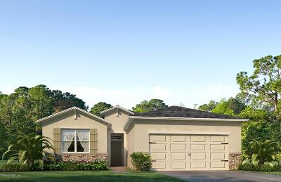 Ocala Single Family Home For Sale: 9191 SW 62nd Terrace Road