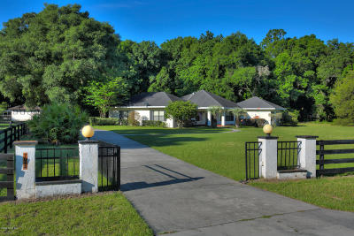 Ocala Single Family Home For Sale: 7024 SW 93rd Street Road