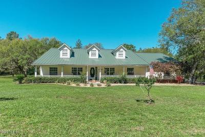 Citrus County Single Family Home For Sale: 382 N Quartz Avenue