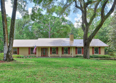 Ocala Single Family Home For Sale: 30 Needles Drive