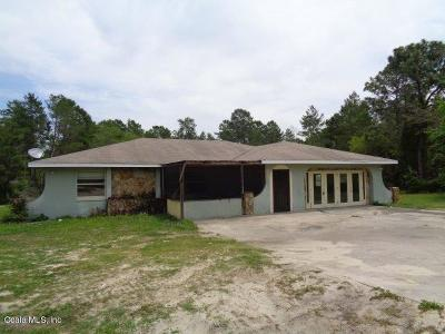 Ocala Single Family Home For Sale: 17283 SW 17th Circle