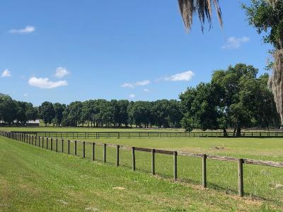 Ocala Farm For Sale: 01 SW 128th Lane