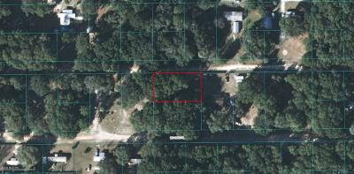 Citra Residential Lots & Land For Sale: 2930 NE 163rd Ln