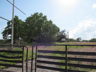 Morriston Farm For Sale: 7250 SE Highway 41