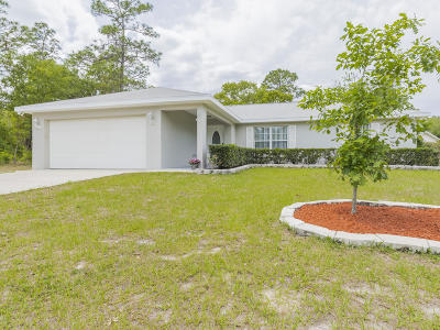 Dunnellon Single Family Home For Sale: 9910 SW 196th Ave Road