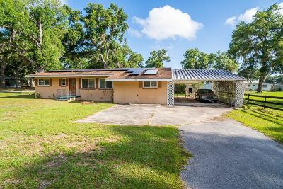 Belleview Single Family Home For Sale: 6541 SE 107th Place