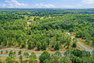 Lady Lake Residential Lots & Land For Sale: Darlington Avenue #7
