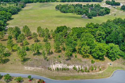 Lady Lake Residential Lots & Land For Sale: Grantham Court #15