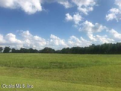 Ocala Residential Lots & Land For Sale: SE 22nd Ave Rd Avenue #31