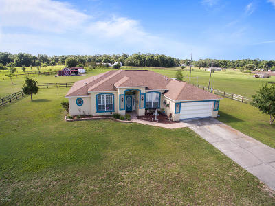 Ocklawaha Single Family Home For Sale: 17264 SE 55 Place