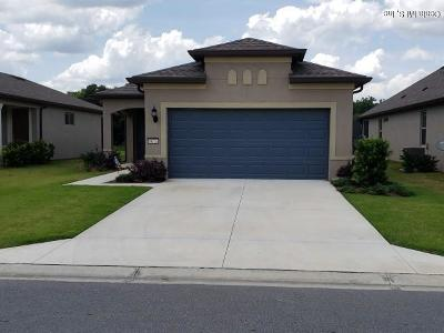 Ocala Single Family Home For Sale: 9673 SW 63 Loop