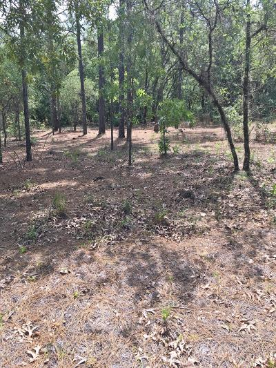 Dunnellon Residential Lots & Land For Sale: SW 206 Avenue