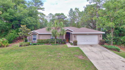 Dunnellon Single Family Home Pending: 10923 N Dragonis Drive