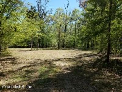 Levy County Residential Lots & Land For Sale: 6671 SE 20th Avenue