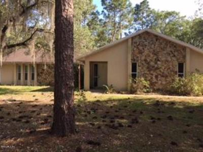 Dunnellon Single Family Home For Sale: 22680 SW Anchor Boulevard
