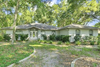 Dunnellon Single Family Home For Sale: 19331 SW 90th Lane Road