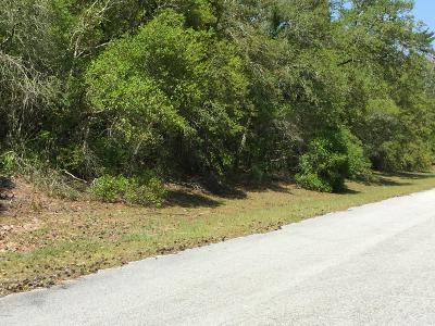 Ocala Residential Lots & Land For Sale: SW 32nd Circle #9