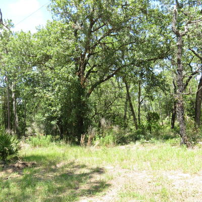 Residential Lots & Land For Sale: SE 3rd Street