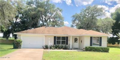 Lady Lake Single Family Home For Sale: 1206 Crabapple Lane