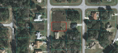 Ocala Residential Lots & Land For Sale: SW 46th Circle