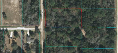 Dunnellon Residential Lots & Land For Sale: SW 125th Terrace