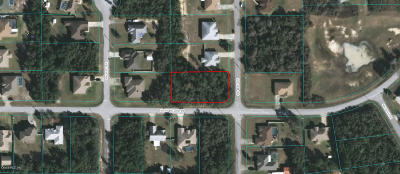 Ocala Residential Lots & Land For Sale: SW 41st Ave #21