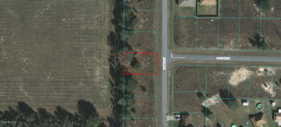 Ocala Residential Lots & Land For Sale: SW 48th Court