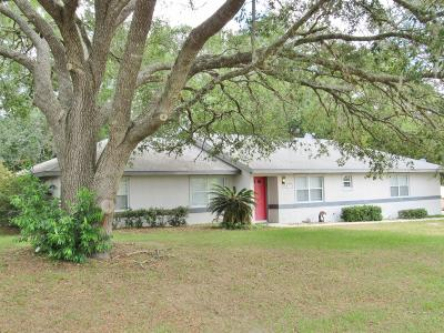 Dunnellon Single Family Home For Sale: 19645 SW 88th Place Road