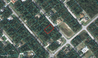 Ocala Residential Lots & Land For Sale: SW 23rd Ct Road